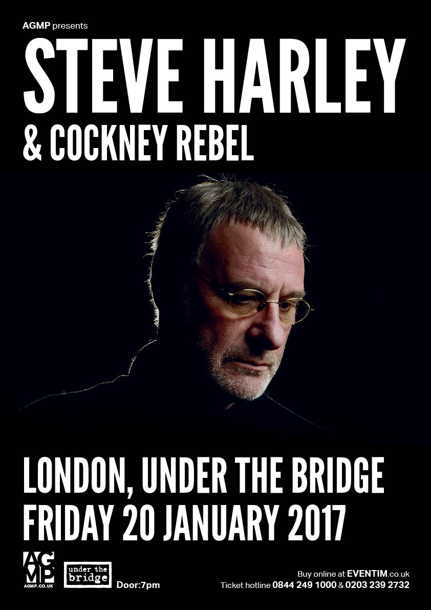 steve-harley-visual-stage-2